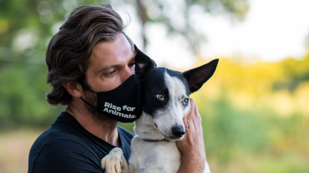Nathan hugs Panda, one of the dogs rescued from a lab by Rise for Animals in 2020