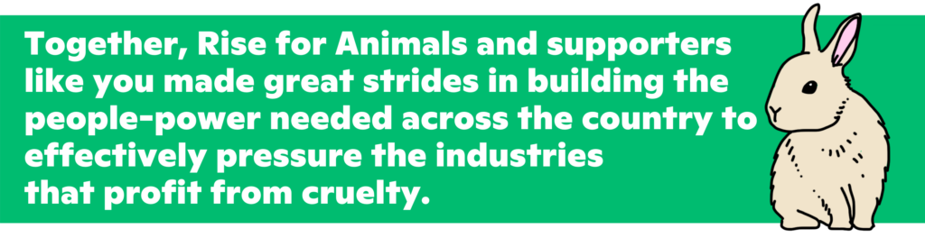 Together, Rise for Animals and supporters like you made great strides in building the people-power needed across the country to effectively pressure the industries that profit from cruelty.