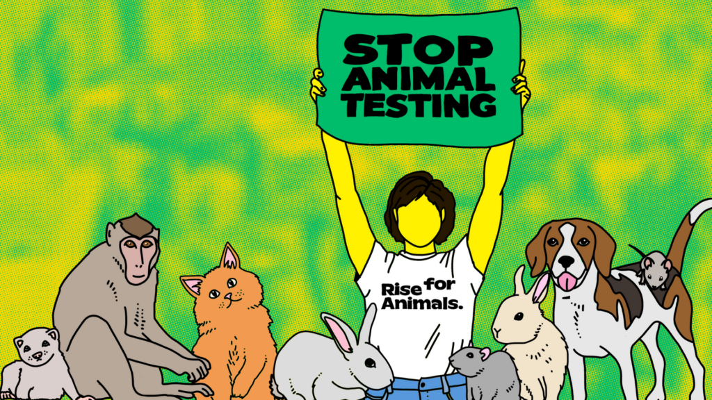 Illustration of an activist holding a STOP ANIMAL TESTING sign behind a ferret, monkey, cat, rabbits, rat, beagle, and mouse